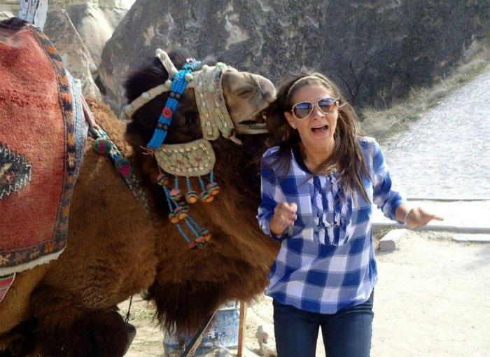 Голодный верблюд.