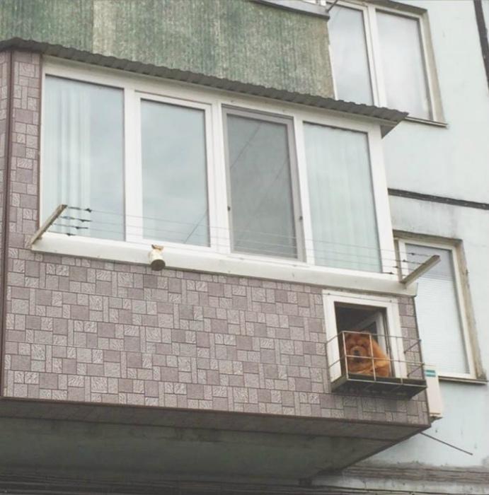 Балкон на балконе. | Фото: Телеграф.