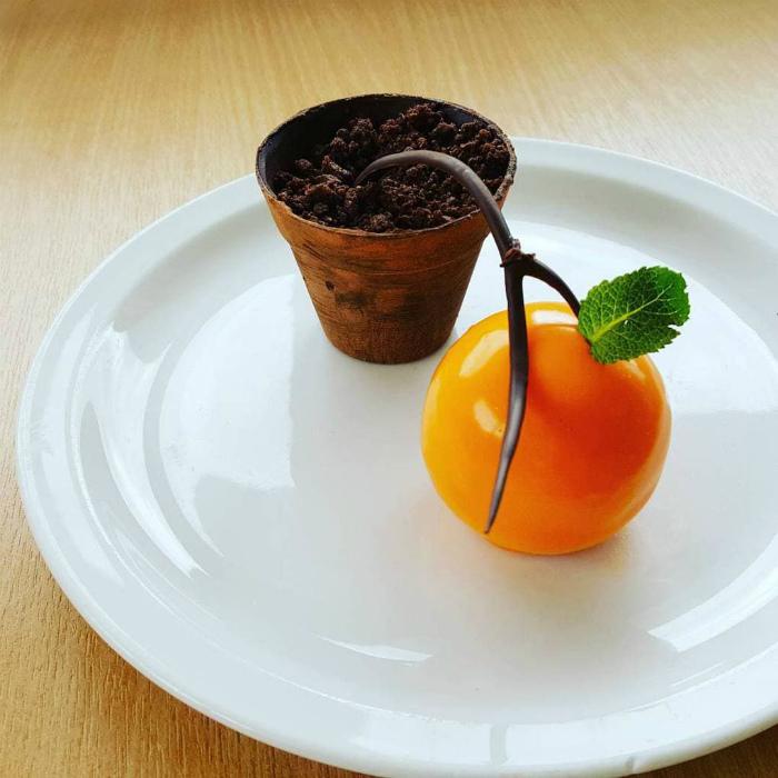 Съедобное апельсиновое дерево.