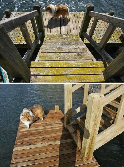 История одного деревянного причала с лестницей. | Фото: Интересные истории.