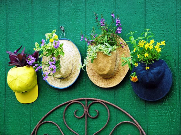 Цветы в шляпах.