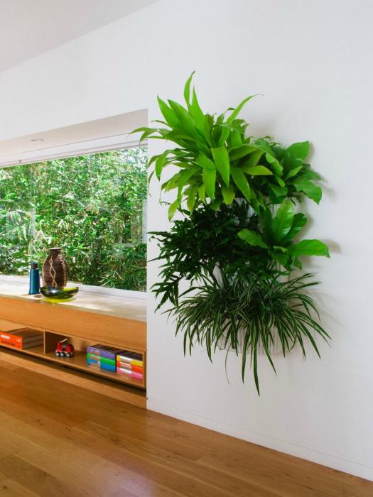 «Невидимые» вертикальная конструкция для выращивания растений.