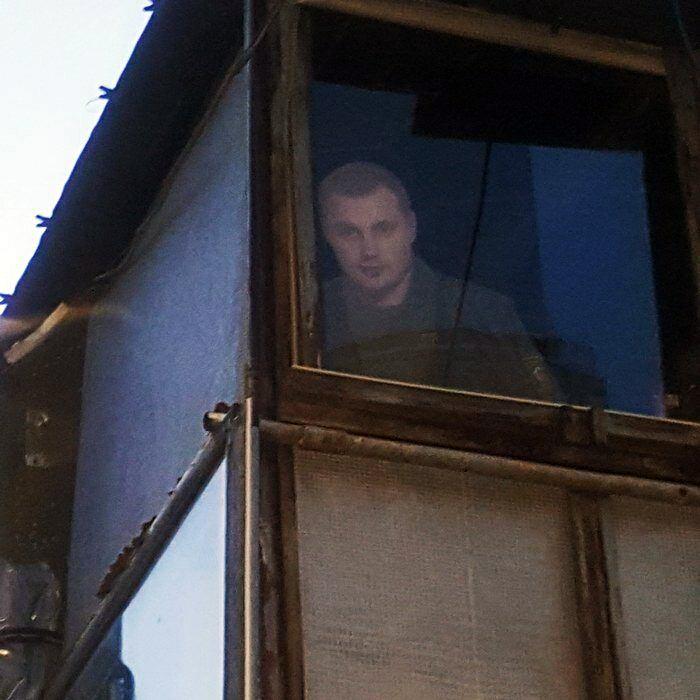 Картонный охранник дома.| Фото: Пикабу.