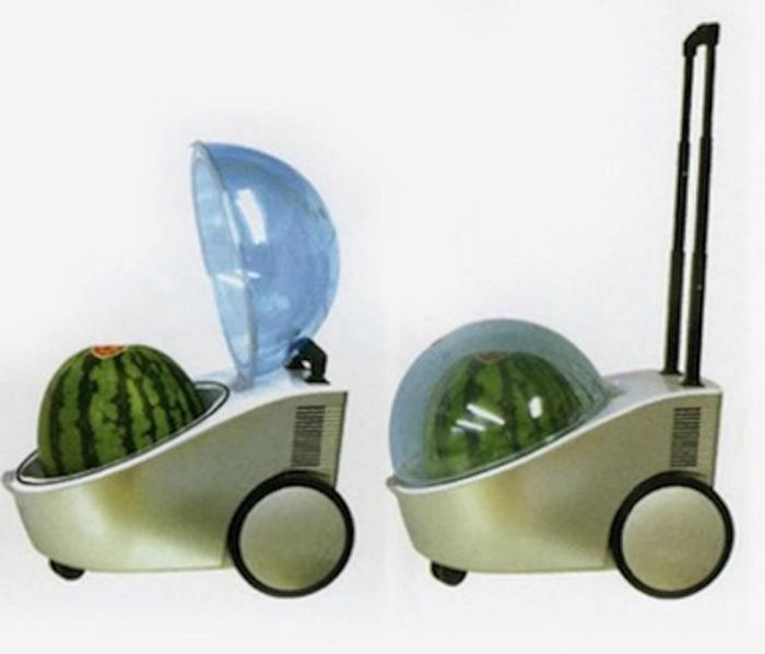 Портативный холодильник Watermelon cooler.
