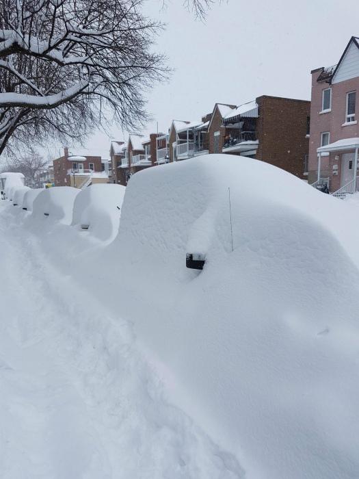 Искренне надеемся, что вы запомнили, где припарковали свою машину! | Фото: CatFly.com.