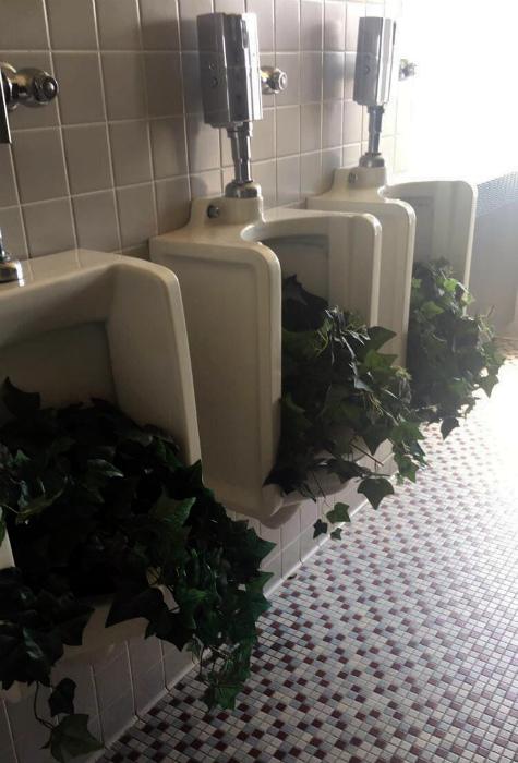 Туалет, который благоухает! | Фото: Фишки.нет.