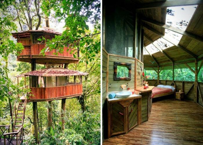 Уютный жилой дом на дереве.