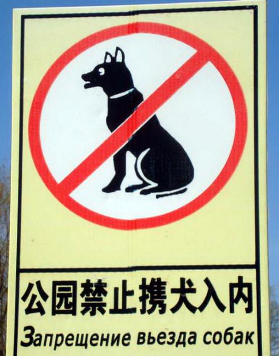 Китай против собак.