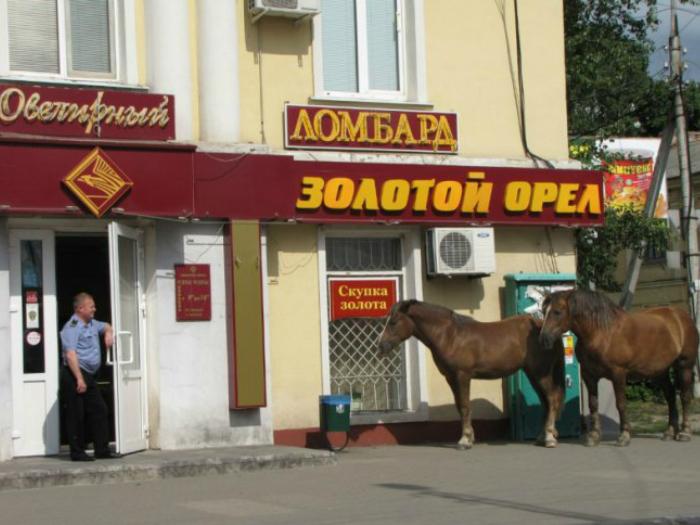 Лошади «припаркованные» у магазина.