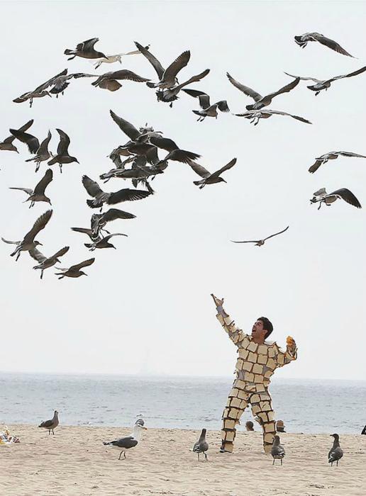 Любитель голубей.