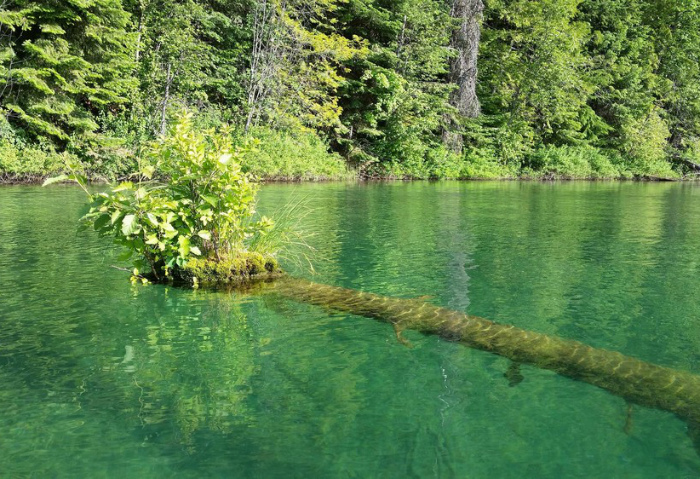 Остров в воде.