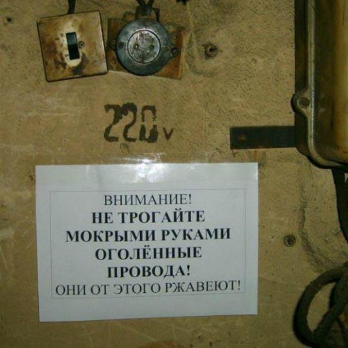 Мы волнуемся за провода... | Фото: Екабу.ру.