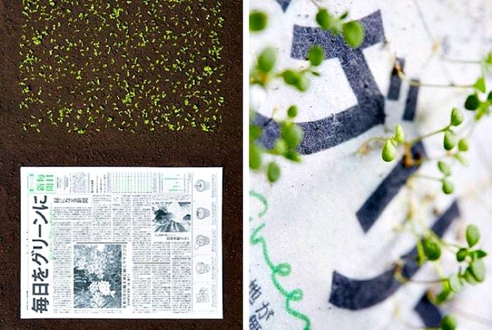 Уникальные газеты, из которых прорастают растения.