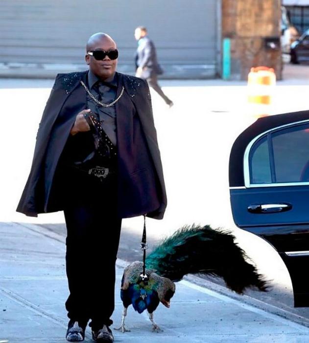 Респектабельный мужчина и его птица.