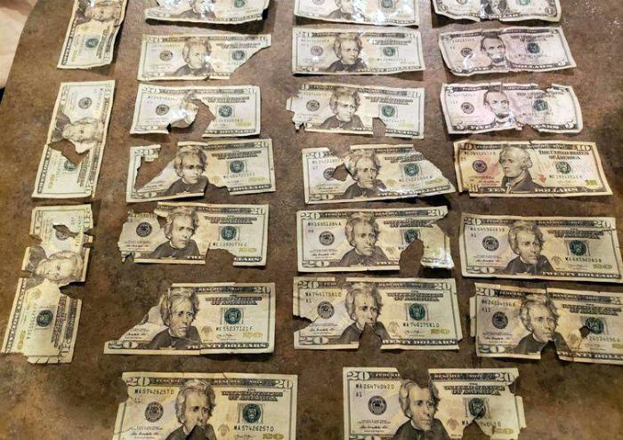 Вот что бывает, когда пресс денег попадает под газонокосилку. | Фото: FOBOXS.com.