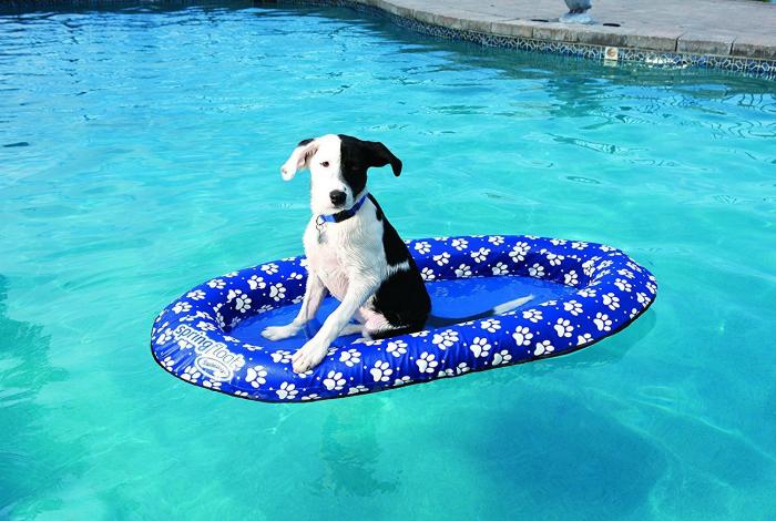 Надувной матрас для собаки.