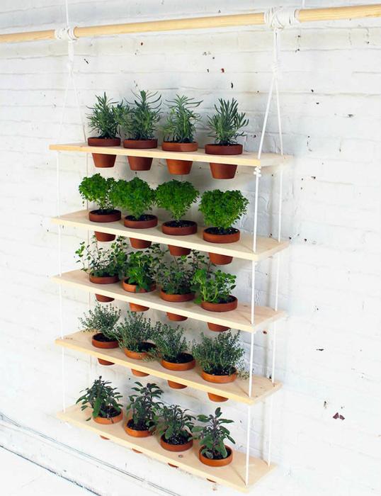 Вертикальный сад.