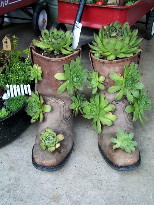 Садові горщики зі старих чобіт.