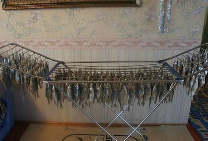 Идеальное место для сушки рыбы.
