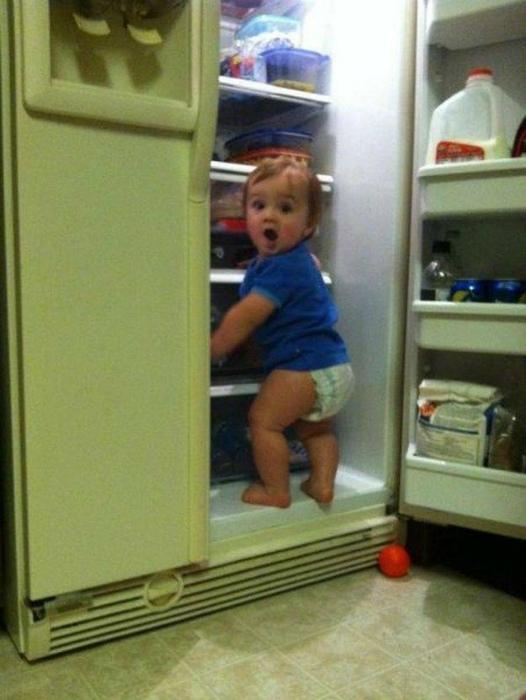 Тайная ревизия холодильника.