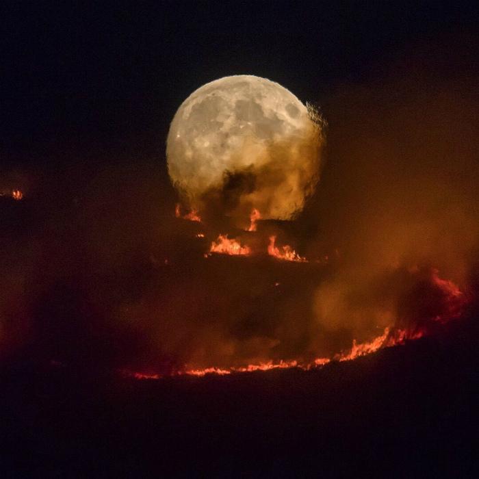 Луна горит, а никто не тушит! | Фото: Pinterest.