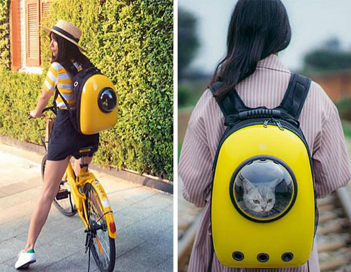 Рюкзак с иллюминатором. | Фото: Tendencee.