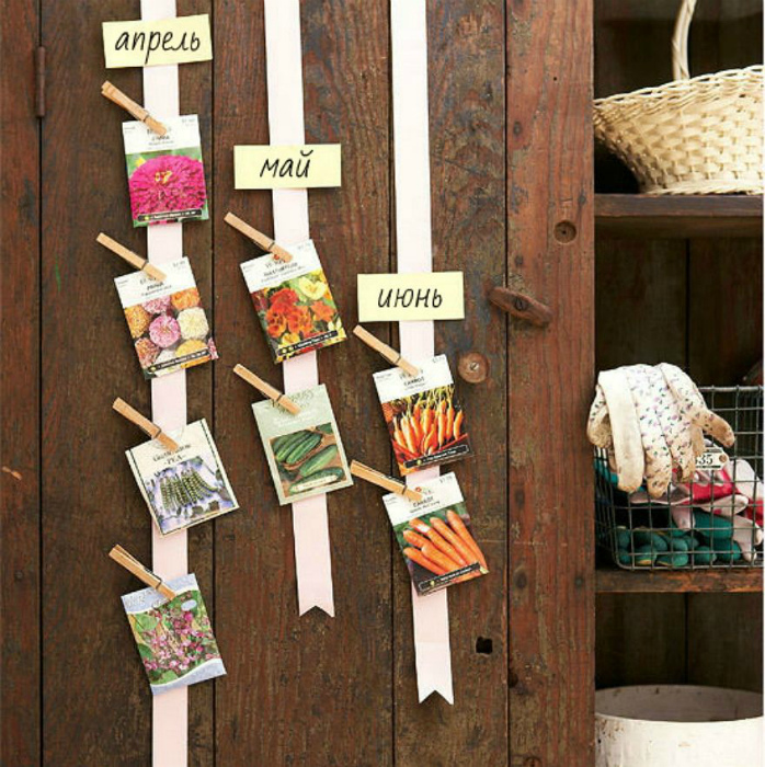 Наглядный посевной календарь. | Фото: Pinterest.