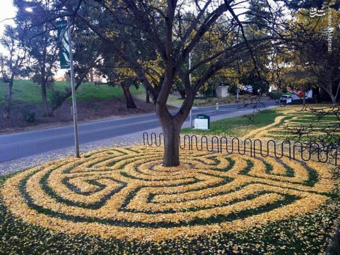 Узор из осенних листьев.