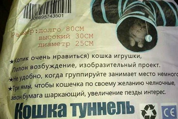 «Мой кот не извращенец!»