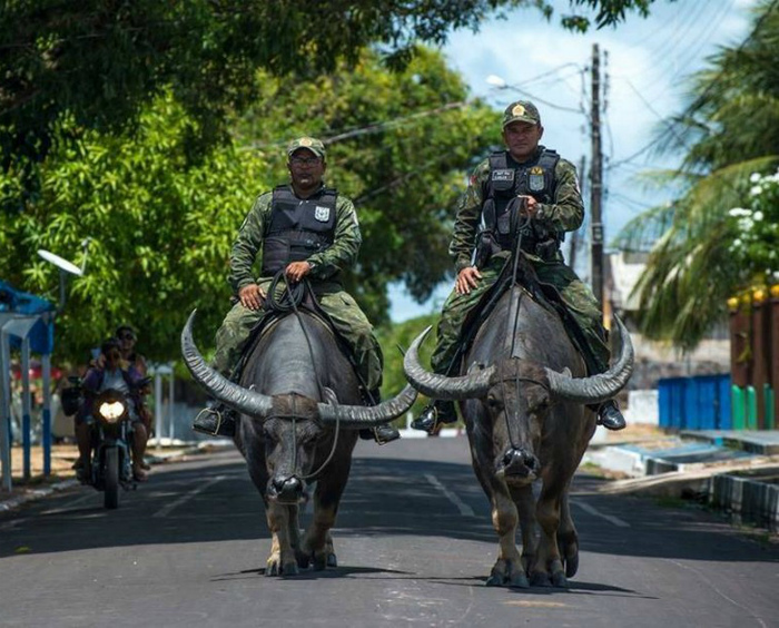 Военная полиция Бразилии. | Фото: Самый сок! - LiveJournal.