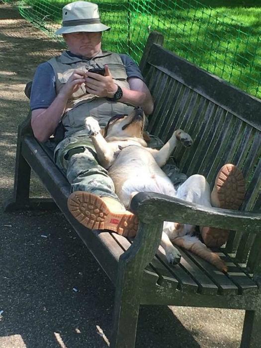 Отдых с любимым... псом. | Фото: AmoMama.
