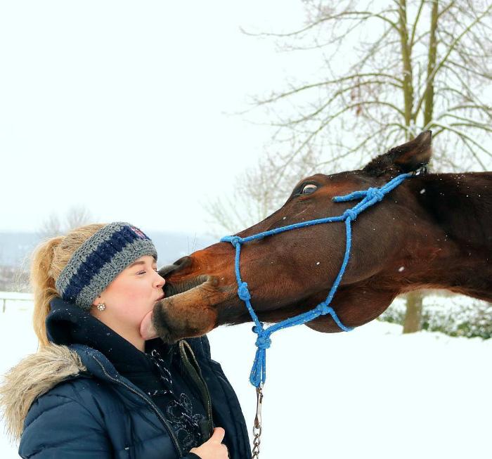 Поцелуй лошади.
