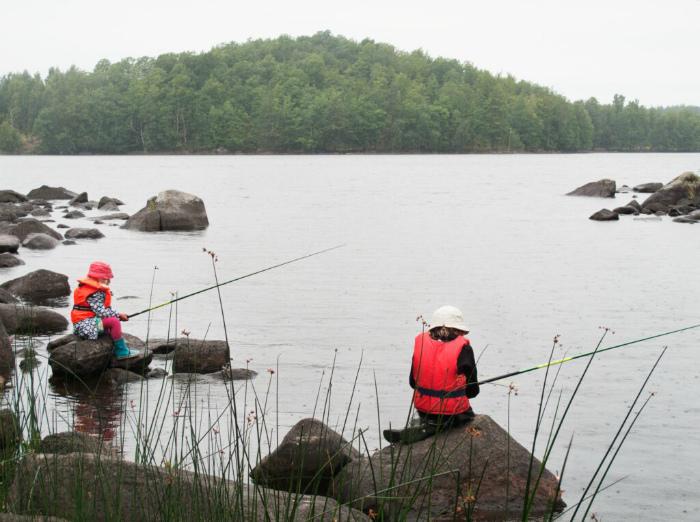 Забота о природе и окружающей среде. | Фото: Достопримечательности Швеции.