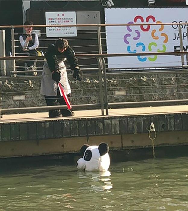 Спасите панду, точнее ее голову!   Фото: Телеграф.