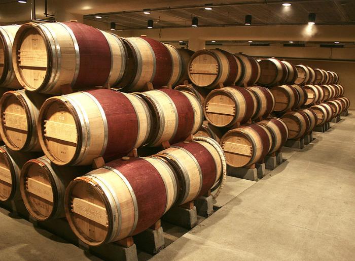 За четыре дня пребывания в этом лагере для взрослых можно приобрести основные навыки виноделия.