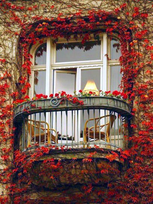 Потрясающий балкончик в окружении красного плюща. Париж, Франция.