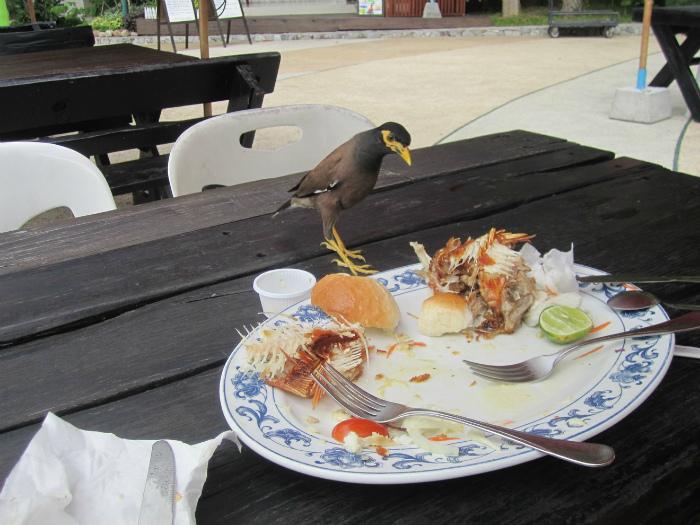 Остатки еды на тарелке.