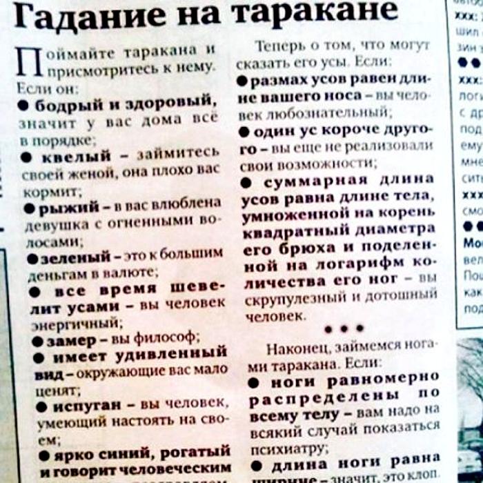 Новые методы самопознания на Novate.ru. | Фото: fishki.net.
