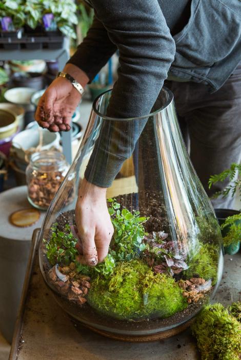 Растения в стеклянной вазе, украшенной бусинами и камнями.