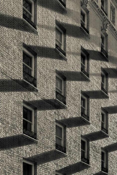 Идеальный рисунок из границ и теней. | Фото: Тематический форум ВМЕСТЕ.