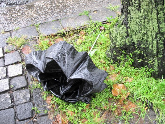 Сломанный зонт. | Фото: Бергенский заяц.