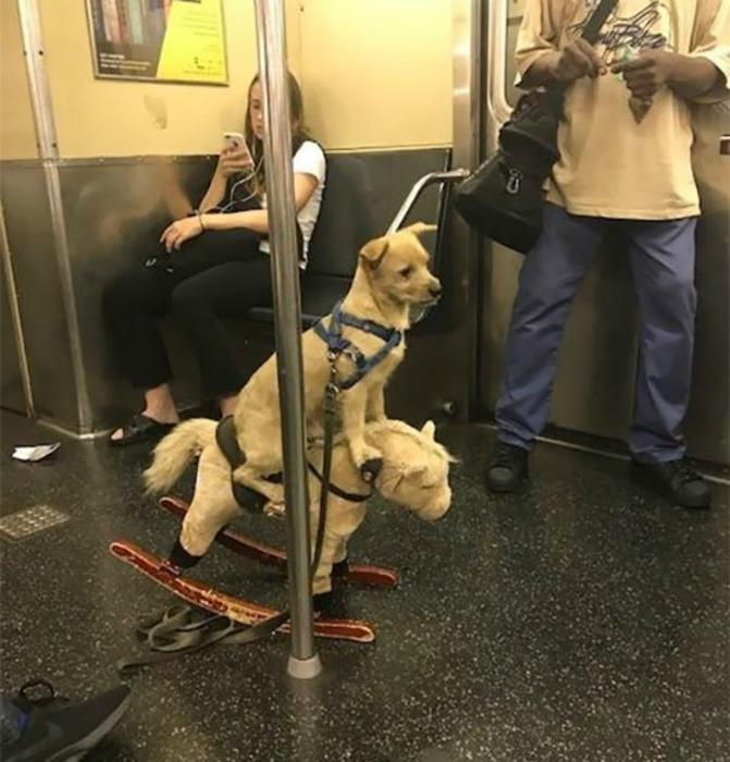 Идиллическая картина в вагоне метро.