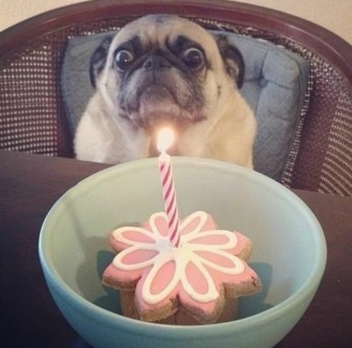 Боится собственного дня рождения.