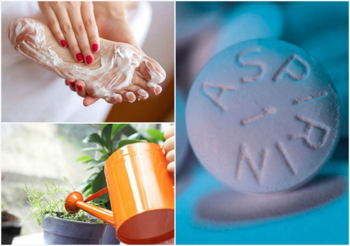 Аспирин для кожи и цветов. | Фото: Fishing-caravan.ru, Pinterest.