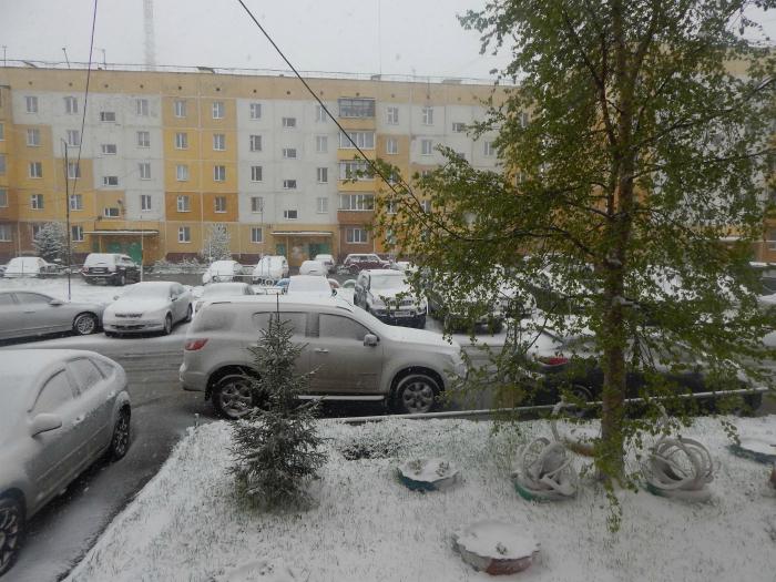 Погода усть лабинск краснодарского края