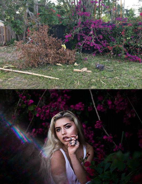 Плетистые цветы на заборе. | Фото: Pinterest.
