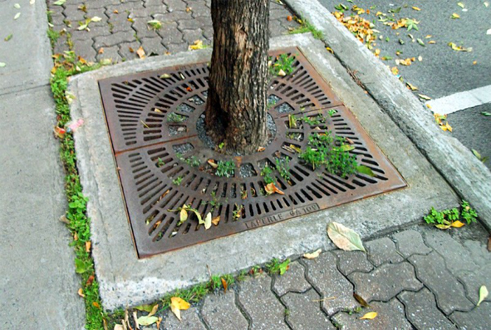 Решетка для корней деревьев. | Фото: cellcode.us.