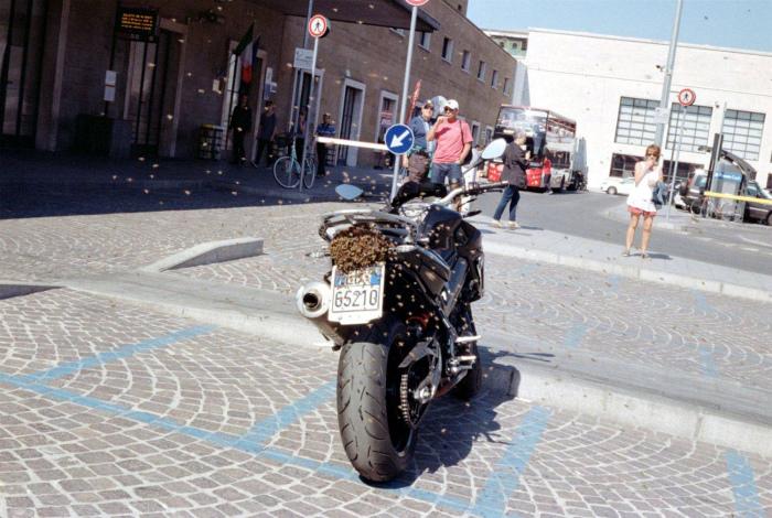 Взяли мотоцикл количеством. | Фото: Zefirka.