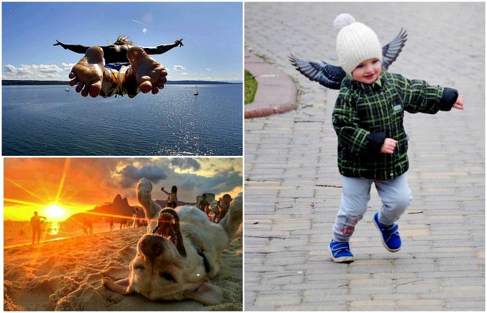 Чудесные фотографии, сделанные в самый что ни на есть подходящий момент.