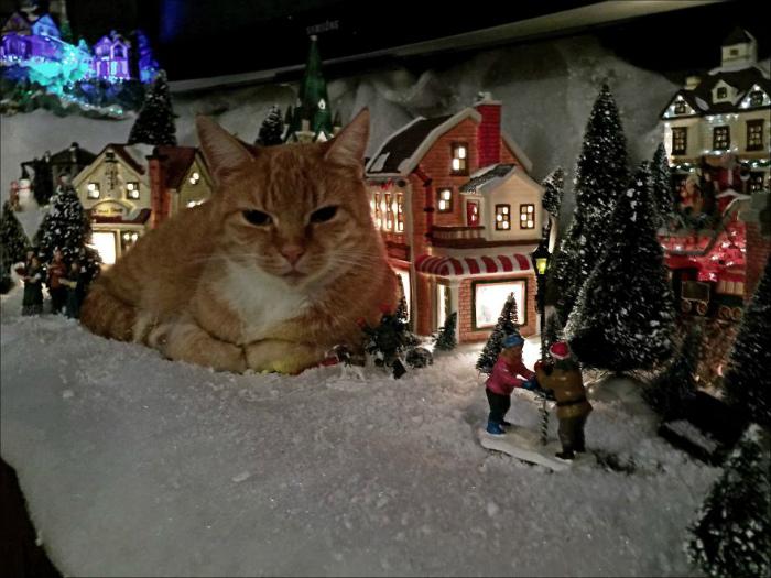 Гигантский кот в новогодней композиции.